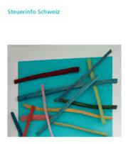 mattig.swiss-SB_Steuerinfo Schweiz